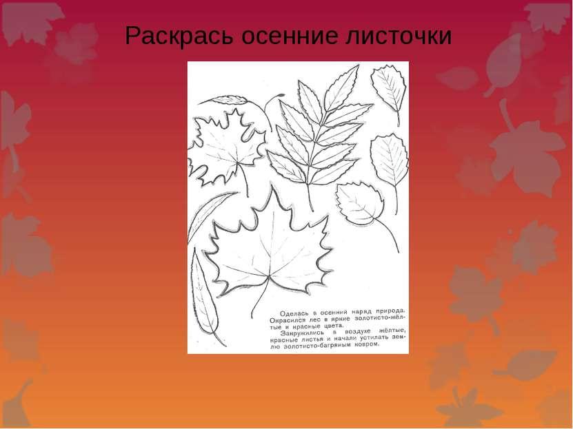 Раскрась осенние листочки