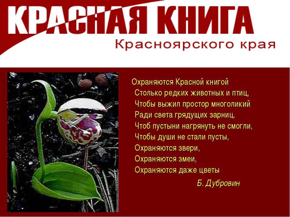 Охраняются Красной книгой Столько редких животных и птиц, Чтобы выжил простор...