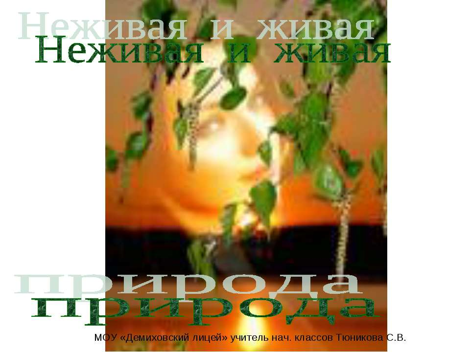 МОУ «Демиховский лицей» учитель нач. классов Тюникова С.В.