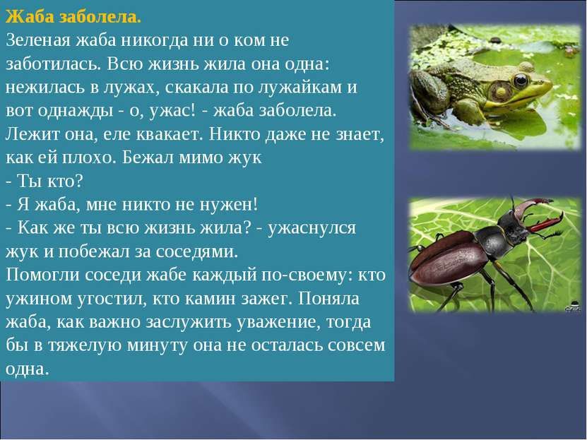 Жаба заболела. Зеленая жаба никогда ни о ком не заботилась. Всю жизнь жила он...