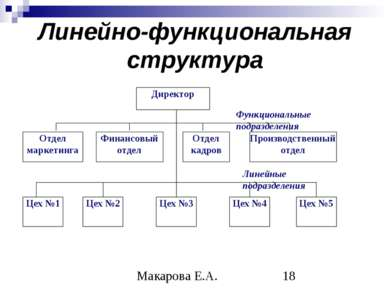 Линейно-функциональная структура Макарова Е.А.