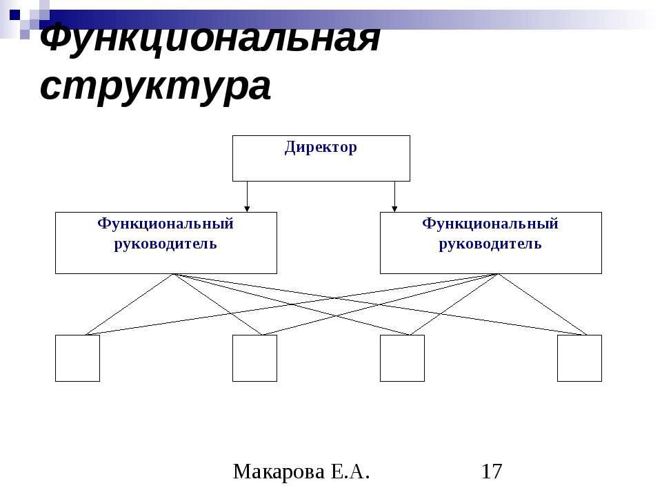 Функциональная структура Макарова Е.А.