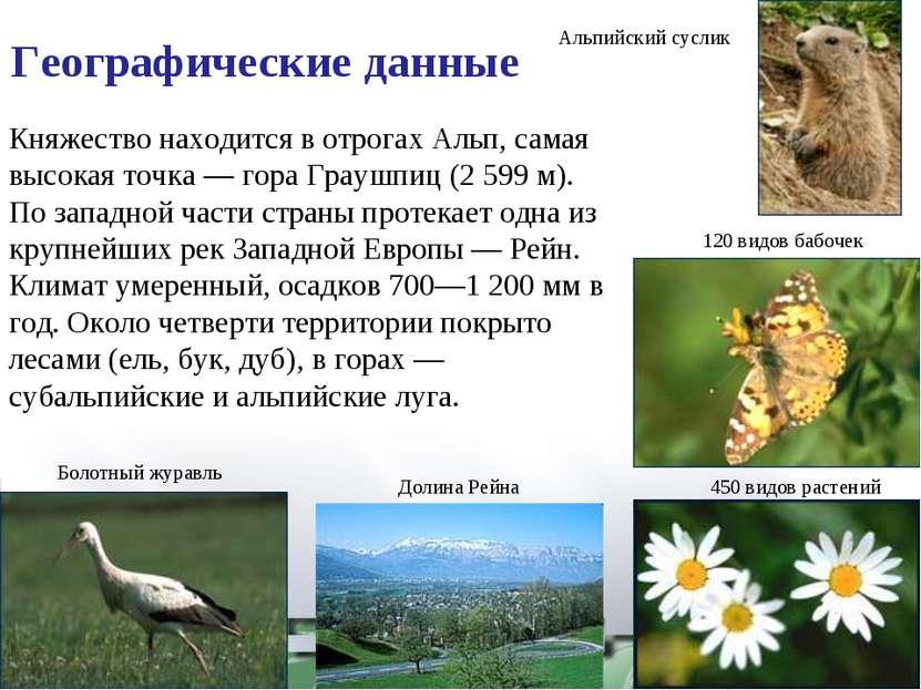 450 видов растений 120 видов бабочек Альпийский суслик Долина Рейна Болотный ...