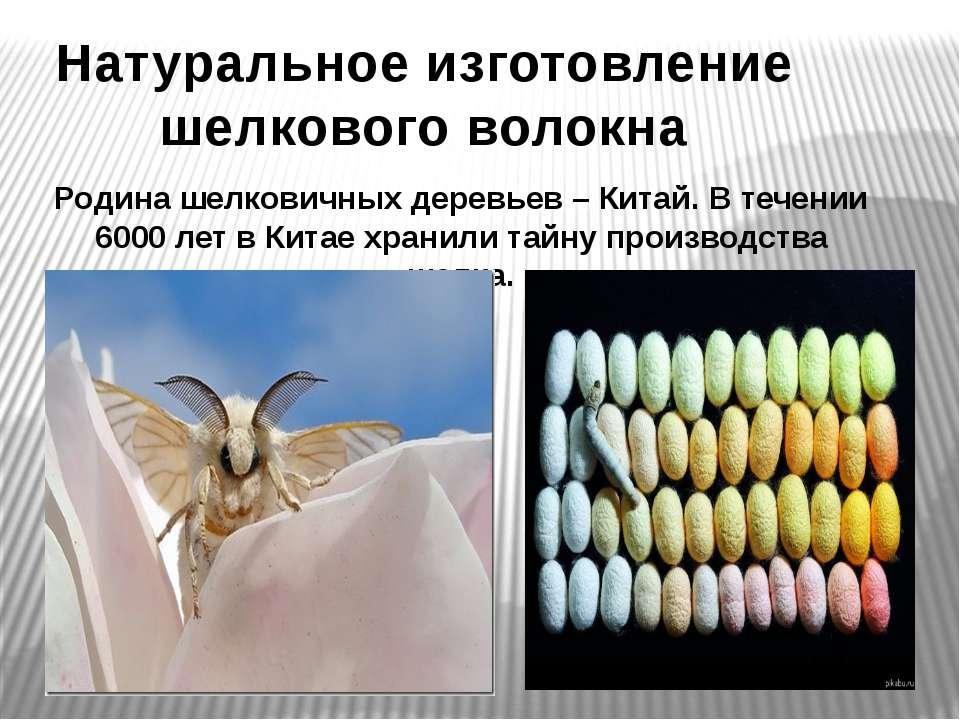 Натуральное изготовление шелкового волокна Родина шелковичных деревьев – Кита...