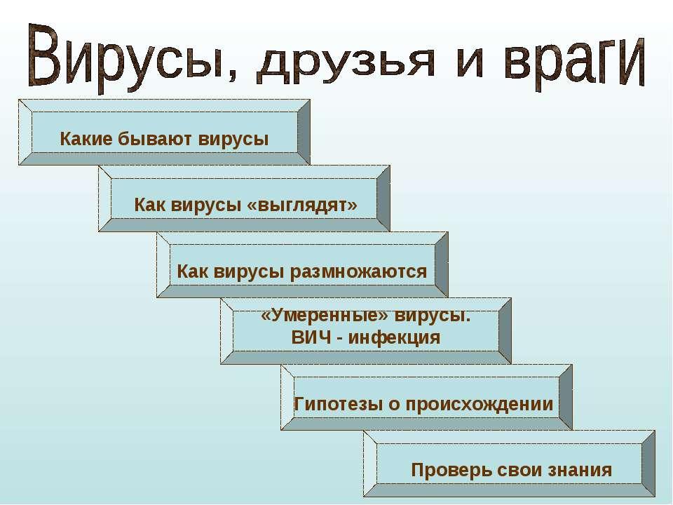 Какие бывают вирусы Как вирусы «выглядят» Как вирусы размножаются «Умеренные»...