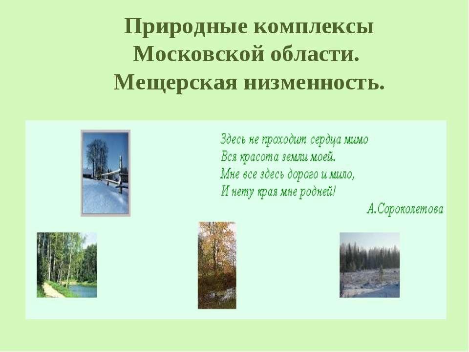 Природные комплексы Московской области. Мещерская низменность.