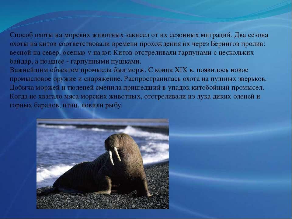 Способ охоты на морских животных зависел от их сезонных миграций. Два сезона ...