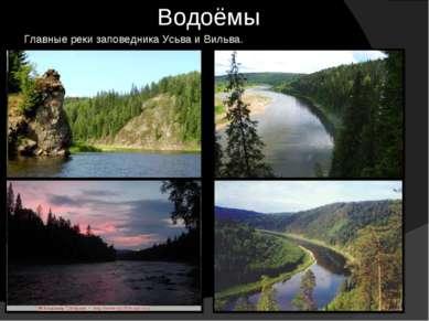 Водоёмы Главные реки заповедника Усьва и Вильва.