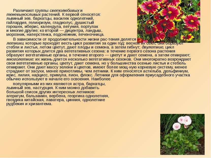 Различают группы светолюбивых и теневыносливых растений. К первой относятся: ...