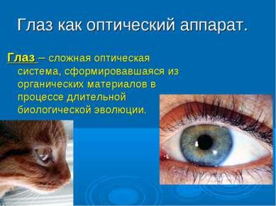 Глаз как оптический аппарат. Глаз – сложная оптическая система, сформировавша...