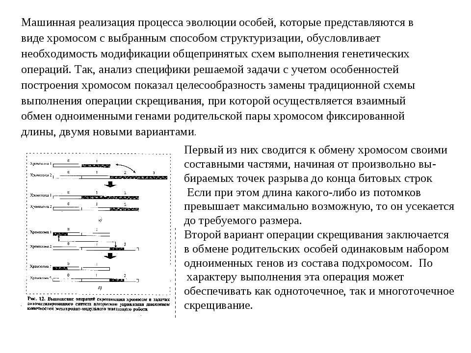 Машинная реализация процесса эволюции особей, которые представляются в виде х...