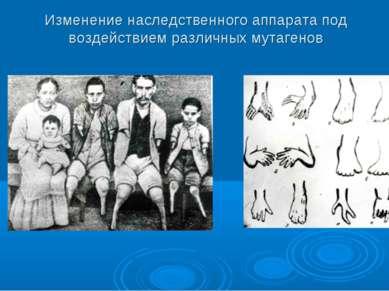 Изменение наследственного аппарата под воздействием различных мутагенов