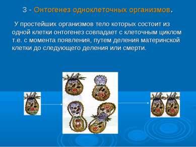 3 - Онтогенез одноклеточных организмов. У простейших организмов тело которых ...