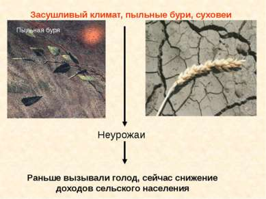 Засушливый климат, пыльные бури, суховеи Неурожаи Раньше вызывали голод, сейч...