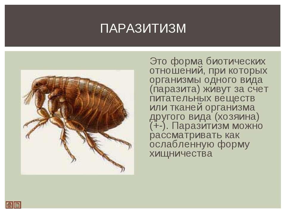 Это форма биотических отношений, при которых организмы одного вида (паразита)...