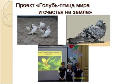 Проект «Голубь-птица мира и счастья на земле»