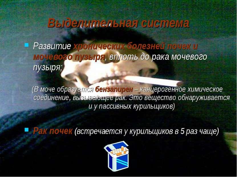 Выделительная система Развитие хронических болезней почек и мочевого пузыря, ...