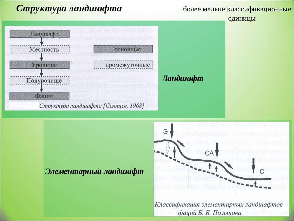 Структура ландшафта более мелкие классификационные единицы Ландшафт Элементар...
