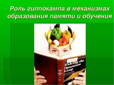 Роль гиппокампа в механизмах образования памяти и обучения