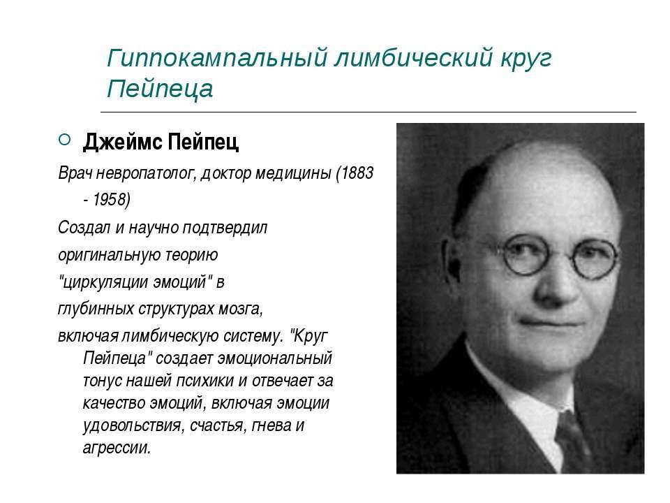 Гиппокампальный лимбический круг Пейпеца Джеймс Пейпец Врач невропатолог, док...