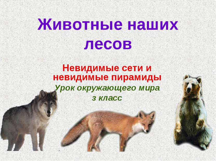 Животные наших лесов Невидимые сети и невидимые пирамиды Урок окружающего мир...