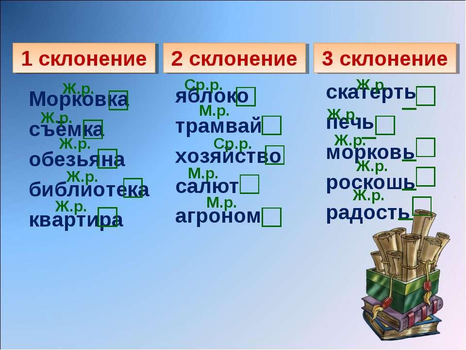 1 склонение 2 склонение 3 склонение Морковка съёмка обезьяна библиотека кварт...