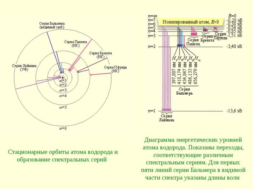 Стационарные орбиты атома водорода и образование спектральных серий Диаграмма...