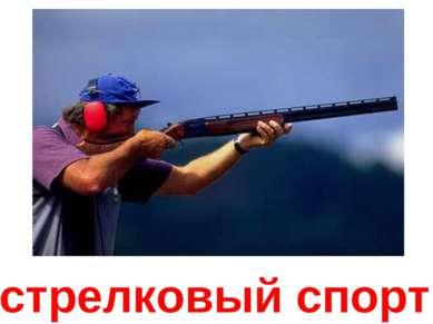 стрелковый спорт
