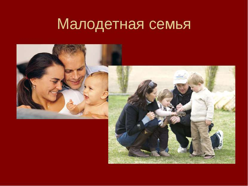 Малодетная семья