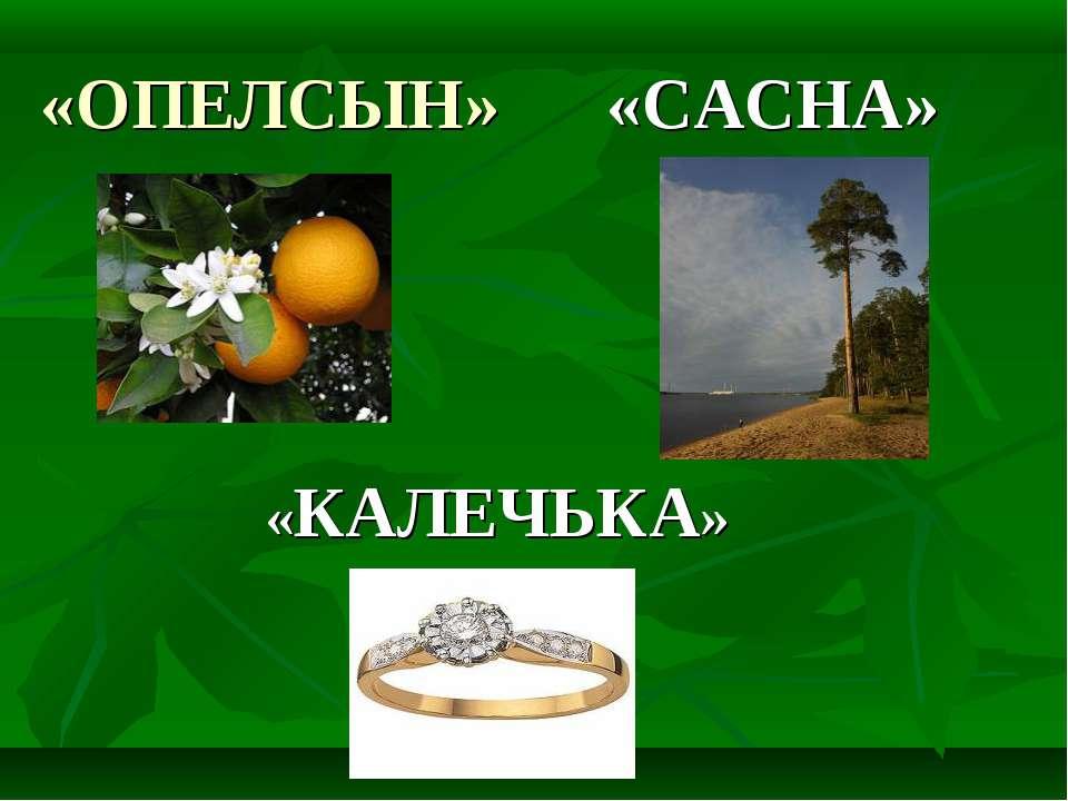«ОПЕЛСЫН» «САСНА» «КАЛЕЧЬКА»