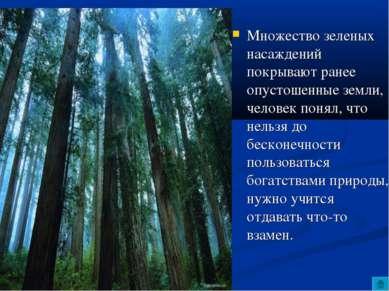 Множество зеленых насаждений покрывают ранее опустошенные земли, человек поня...