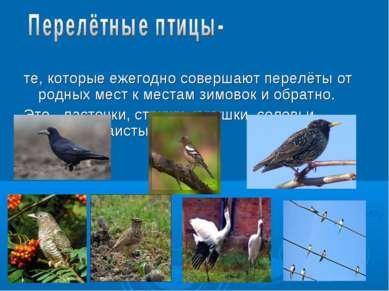 те, которые ежегодно совершают перелёты от родных мест к местам зимовок и обр...
