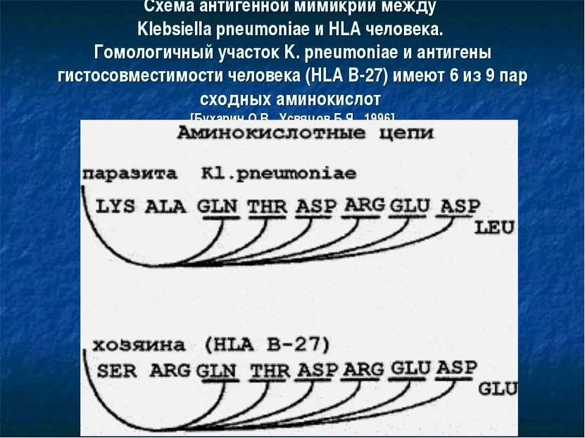 Схема антигенной мимикрии между Klebsiella pneumoniae и HLA человека. Гомолог...