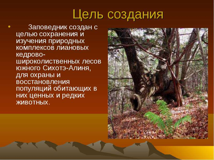 Цель создания Заповедник создан с целью сохранения и изучения природных компл...