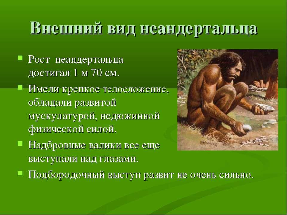 Внешний вид неандертальца Рост неандертальца достигал 1 м 70 см. Имели крепко...