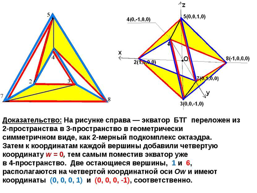 Доказательство: На рисунке справа — экватор БТГ переложен из 2-пространства в...