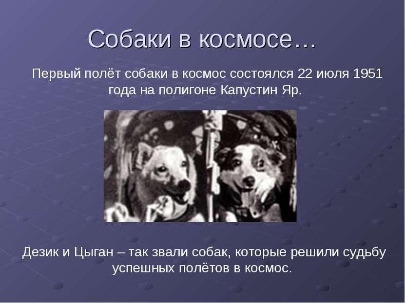Собаки в космосе… Первый полёт собаки в космос состоялся 22 июля 1951 года на...