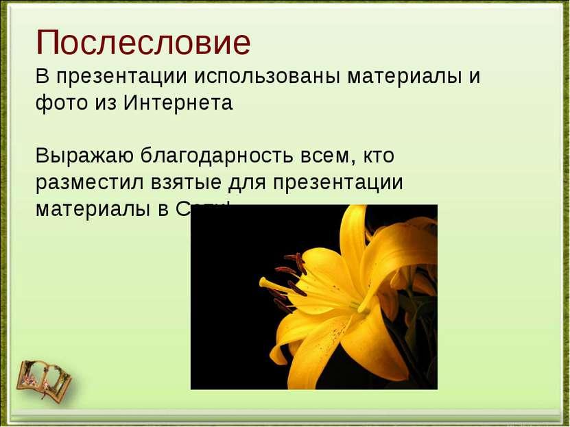 Послесловие В презентации использованы материалы и фото из Интернета Выражаю ...