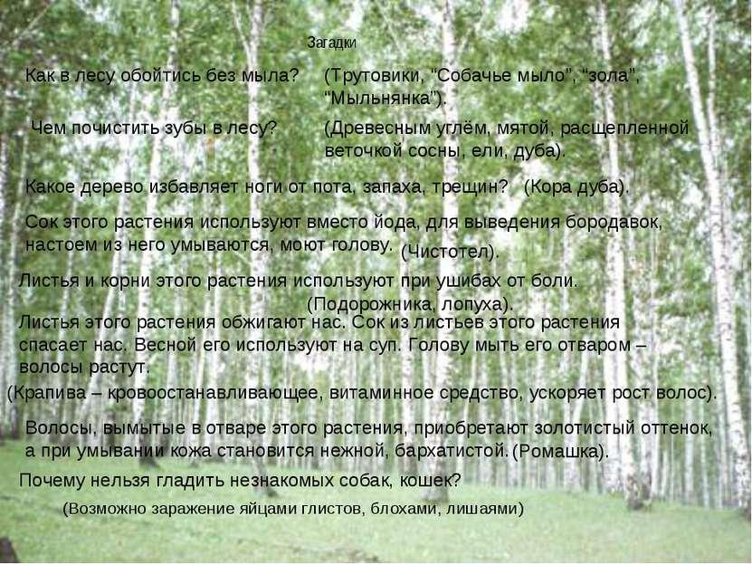 Загадки (Возможно заражение яйцами глистов, блохами, лишаями) Как в лесу обой...