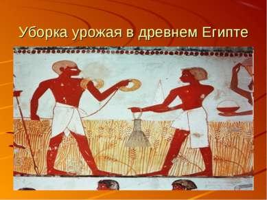 Уборка урожая в древнем Египте