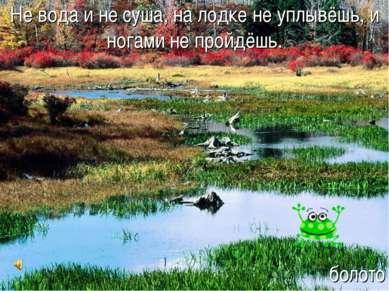 Не вода и не суша, на лодке не уплывёшь, и ногами не пройдёшь. болото