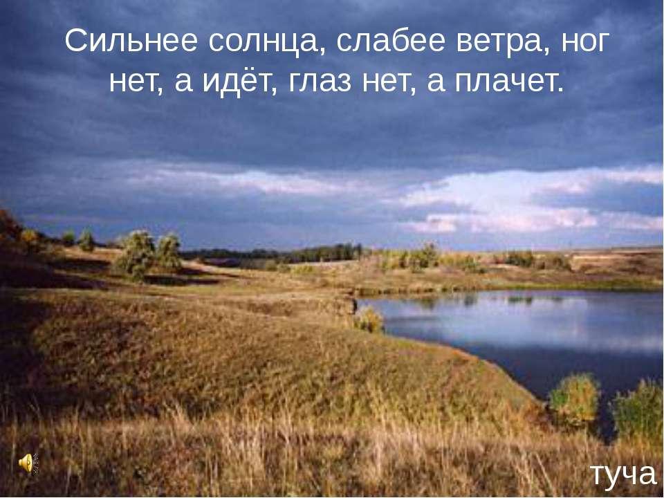 Сильнее солнца, слабее ветра, ног нет, а идёт, глаз нет, а плачет. туча