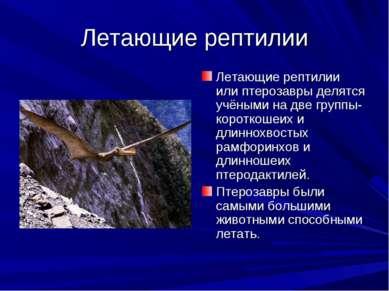 Летающие рептилии Летающие рептилии или птерозавры делятся учёными на две гру...