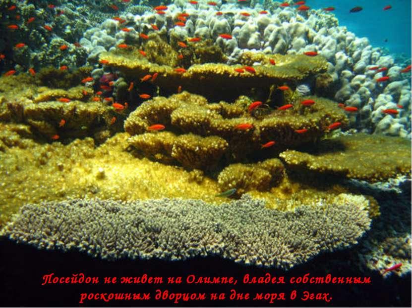 Посейдон не живет на Олимпе, владея собственным роскошным дворцом на дне моря...