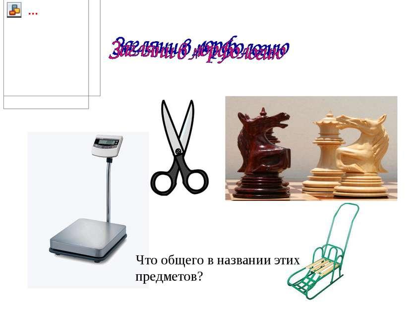 Что общего в названии этих предметов?