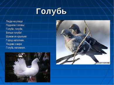 Голубь Люди на улице Подняли головы: Голуби, голуби, Белые голуби! Шумом их к...