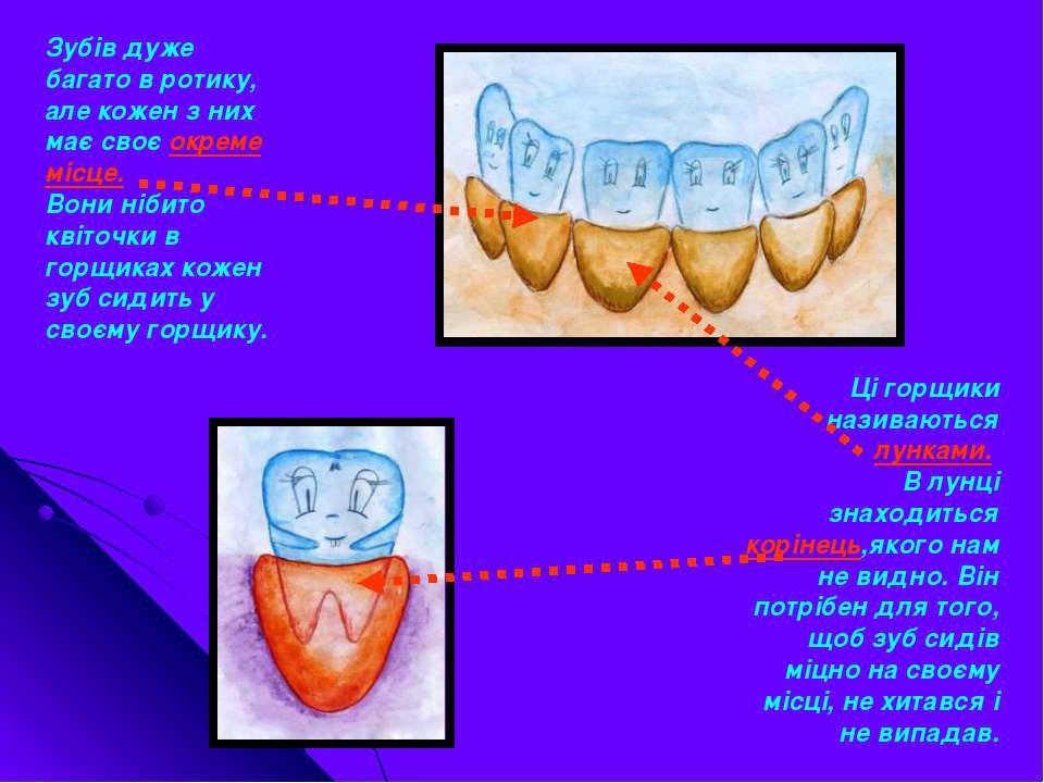 Зубів дуже багато в ротику, але кожен з них має своє окреме місце. Вони нібит...