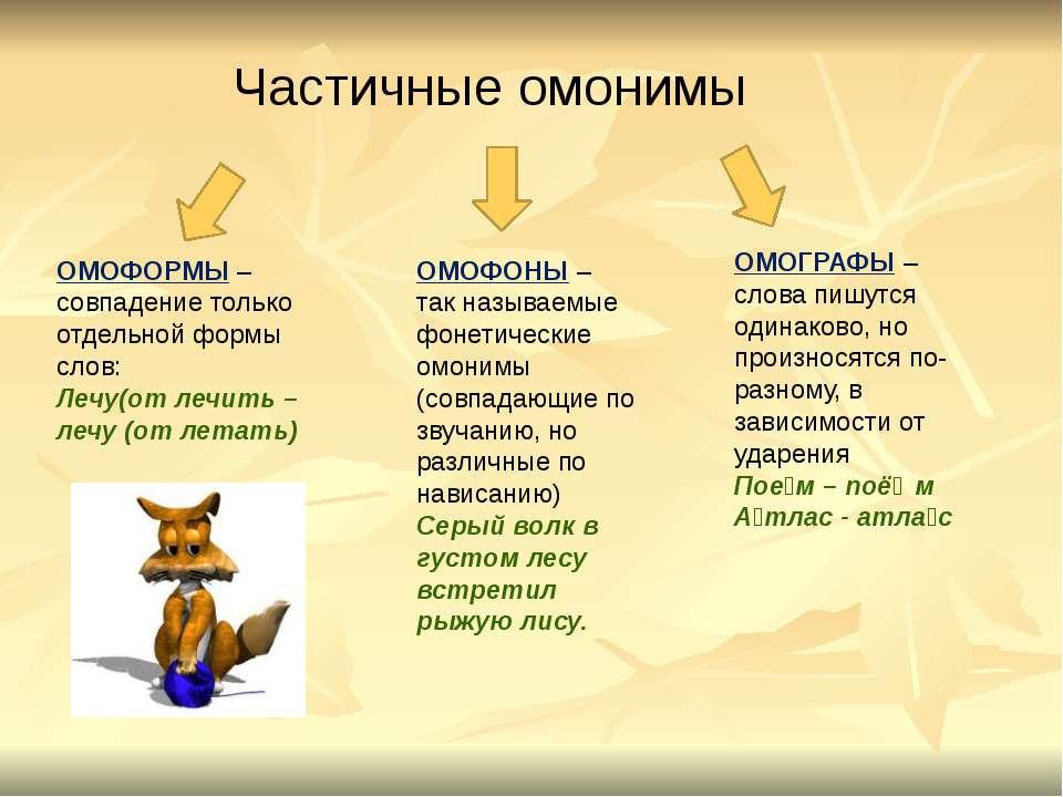 ОМОФОРМЫ – совпадение только отдельной формы слов: Лечу(от лечить – лечу (от ...