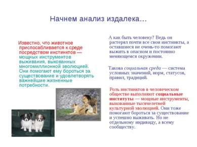 Начнем анализ издалека… Известно, что животное приспосабливается к среде поср...