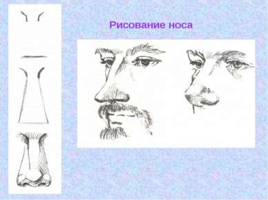 Рисование носа